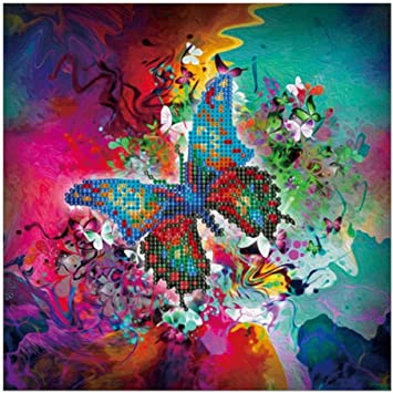 Full Drill 5D DIY Diamond Painting butterfly fairy Cross Stitch kit Home CLD.