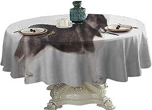 Alaskan Malamute Food Round Tablecloth Alaskan Animal Arctic Canine Mammal Obedient Companion Portrait Purebred Outdoor Picnics 54 inch