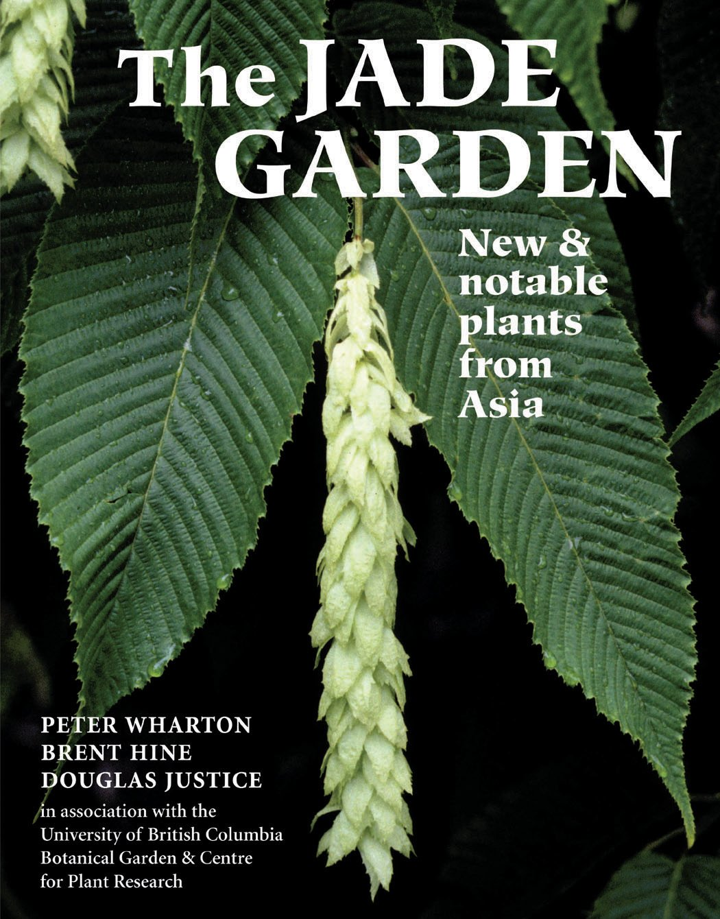 Download The Jade Garden: New and Notable Plants from Asia ebook