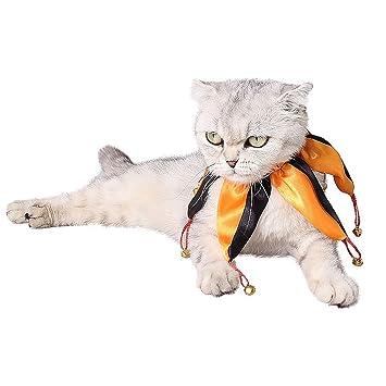 6941cfe5e26e5 Image non disponible pour la couleur : Beetest Costume de Chien  d'halloween, Funny Clown Style Pet Costume Collier Cravate Écharpe
