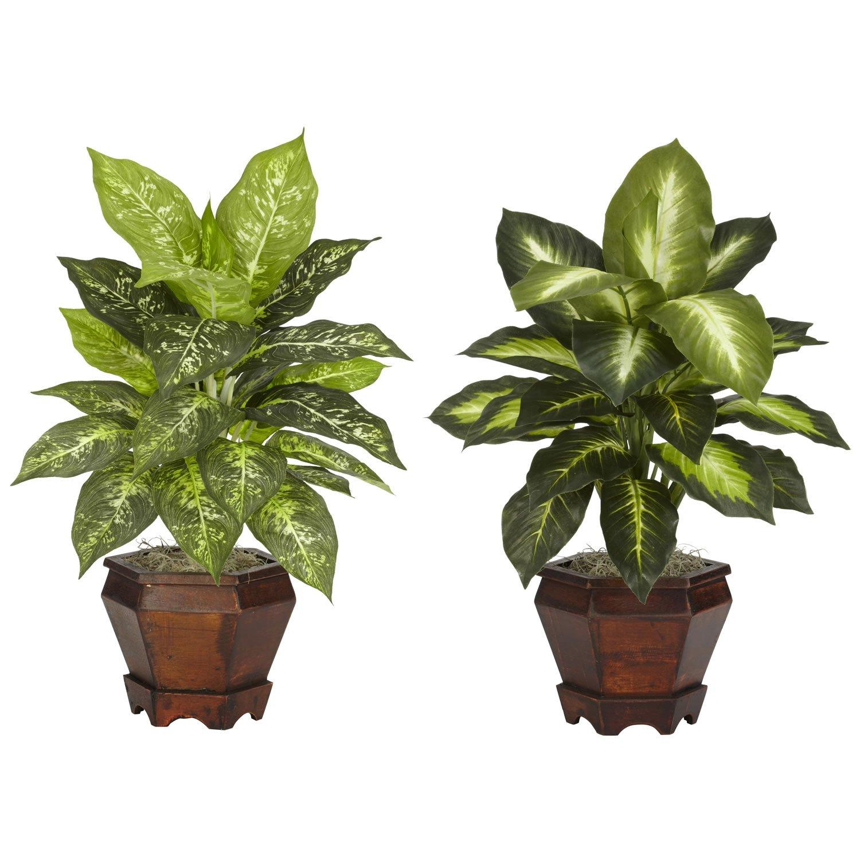 ほぼ自然6712-as-s2 Dieffenbachia with木製花瓶装飾シルクPlant、アソートカラー、2のセット B00A2GYYTA