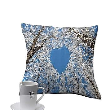 Amazon.com: Funda de cojín para sofá de la marca clayee ...