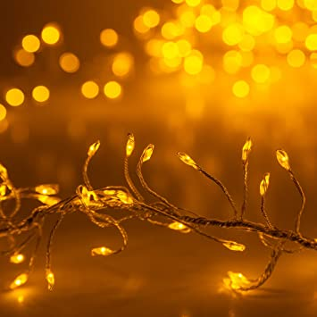 Amazon.com : 8\' Fairy Lights String - LED Cluster Lights Christmas ...