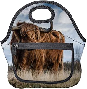 Neoprene Lunch Bag Bull on Glass Field Insulated Picnic Tote Boxes Backpack for Women Men Kids Pocket Style with Zipper