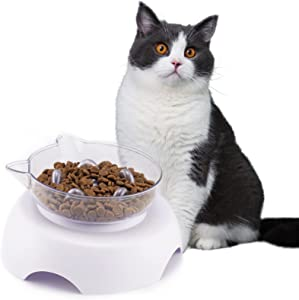 3 in 1 Pet Raised Slow Feeder, Cats Dogs Food Bowls with Stand, 15° Tilted Pet Bowls for Cats and Small Size Dogs, Backflow Prevention, Easy to Clean