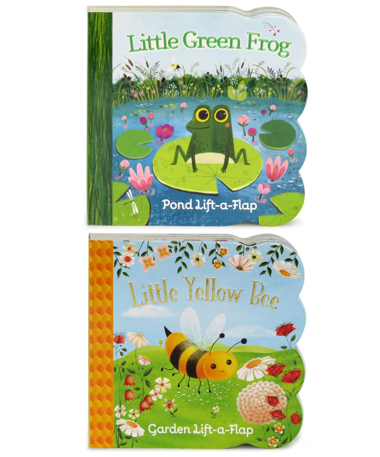 Download 2 Pack Chunky Lift a Flap Board Books - Little Yellow Bee and Little Green Frog pdf epub