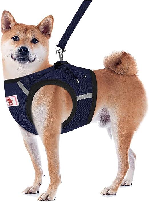 YHEGV ARNÉS para Perros Sin tirones Comodidad para Caminar Arneses ...