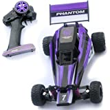 AMENON 1/32 2WD 2.4G High Speed RC Remote Control Racing Buggy Car Off Road RTR Children Boy Kid Gift Collection Toys(Purple)