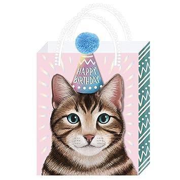 American Crafts 353769 - Bolsa de regalo para gatos, multicolor ...