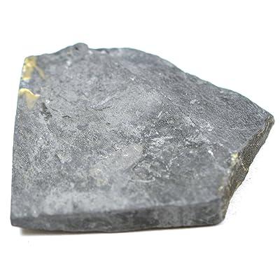 """EISCO Carbonaceous Shale Specimen (Sedimentary Rock), Approx. 1"""" (3cm): Toys & Games"""