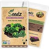 CERTIFIED ORGANIC SEEDS (Appr. 1,100) - Lettuce Seeds, Blend - Heirloom Lettuce Seeds - Non GMO, Non Hybrid - USA