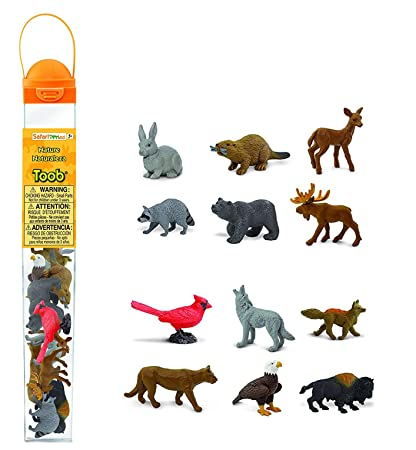 cc0960ef68a Amazon.com  Safari Ltd. Nature TOOB - Comes with 12 Different Hand Painted  Animal Figurine Models - for Ages 5 and Up  Toys   Games