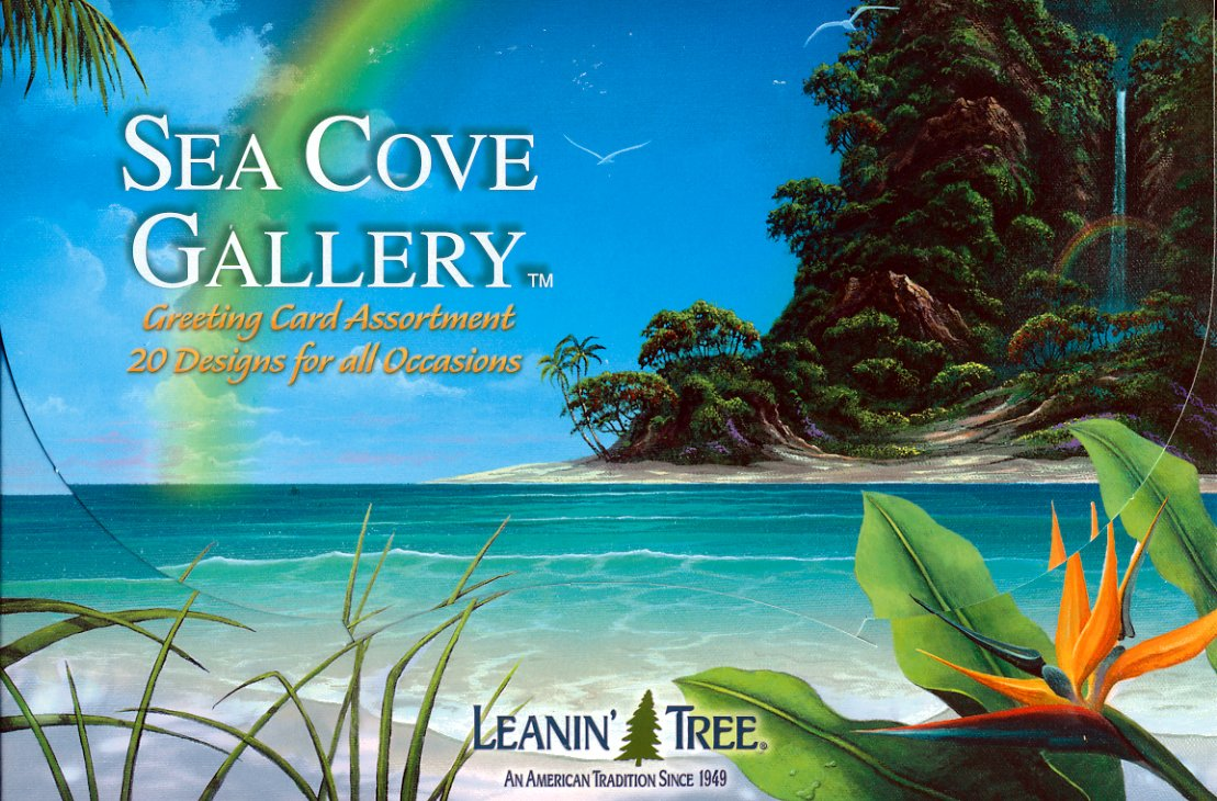 Amazon Sea Cove Gallery Aquatic Greeting Card Assortment By