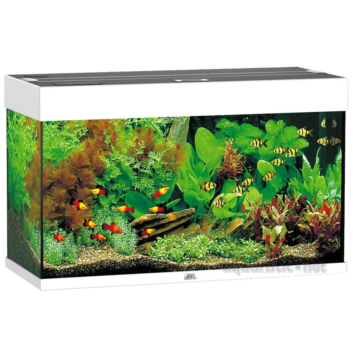 eck aquarium komplettset pw58 hitoiro. Black Bedroom Furniture Sets. Home Design Ideas