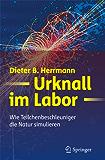 Urknall im Labor: Wie Teilchenbeschleuniger die Natur simulieren