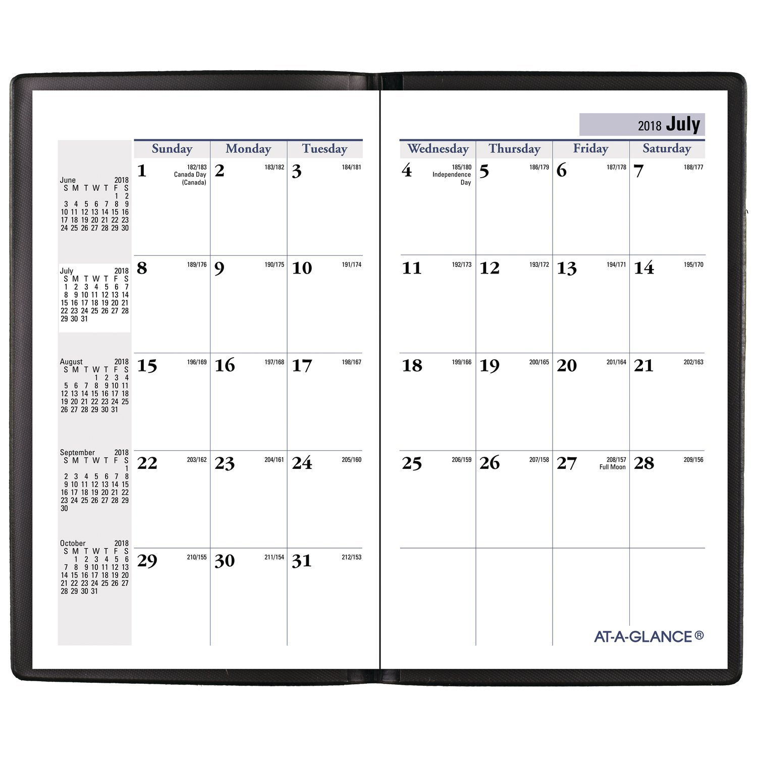 3-1//2 x 6 Pocket Black AT-A-GLANCE 2019-2020 Academic Year Monthly Planner AY5300 DayMinder