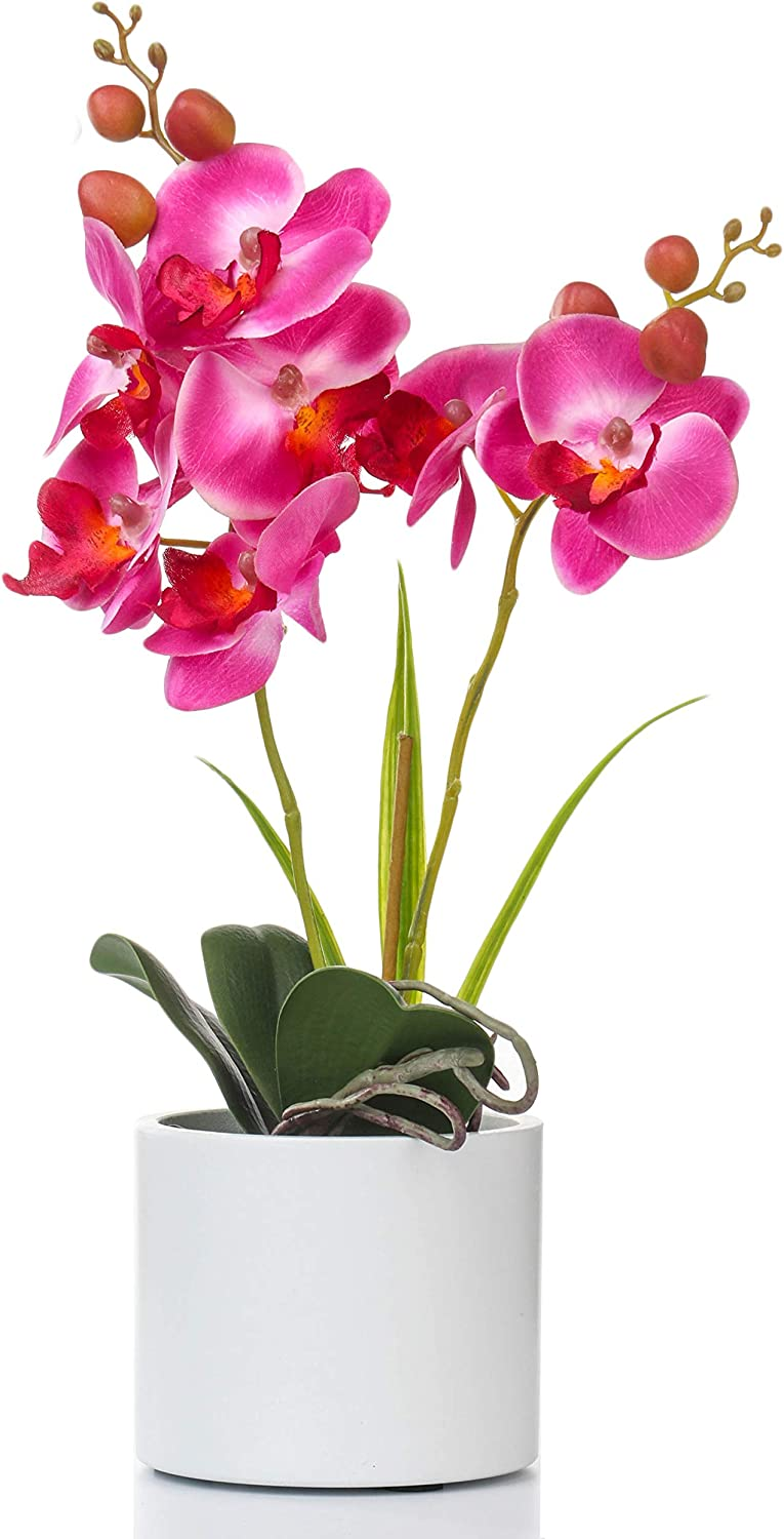 Jusdreen Artificial Flower Bonsai with Vase Vivid Orchid Flower Arrangement Phalaenopsis Flowers Pot for Home Office Décor House Decorations(Purple Orchid)
