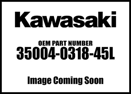 Amazon.com: Kawasaki 2017 Ninja 300 Abs Winter Test Edition ...
