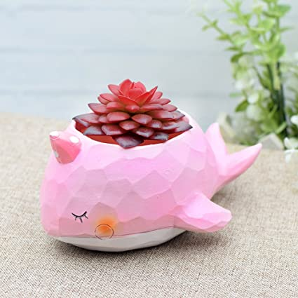 Amazon cuteforyou cute animal shaped cartoon home decoration cuteforyou cute animal shaped cartoon home decoration succulent vase flower pots whale pink mightylinksfo