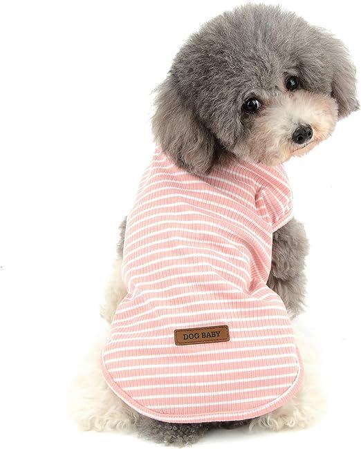 Ranphy - Camisa de algodón para Perro, diseño de Rayas: Amazon.es: Productos para mascotas