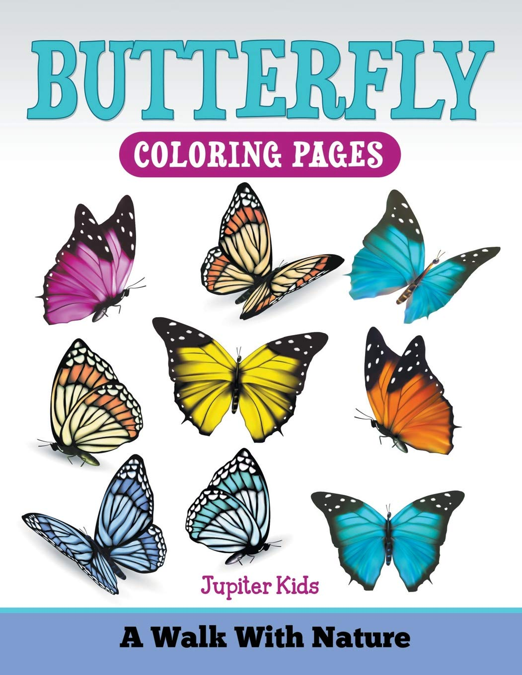 Buy butterfly coloring pages a walk with nature book online at low