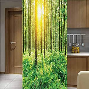 LCGGDB Woodland Decor Decoration Privacy Glass Window Film,One Piece 47x78,Forest Springtime Freshness Foliage Sunbeams Sunrise Nature View Scene Stained Glass Window Decals for Home or Office