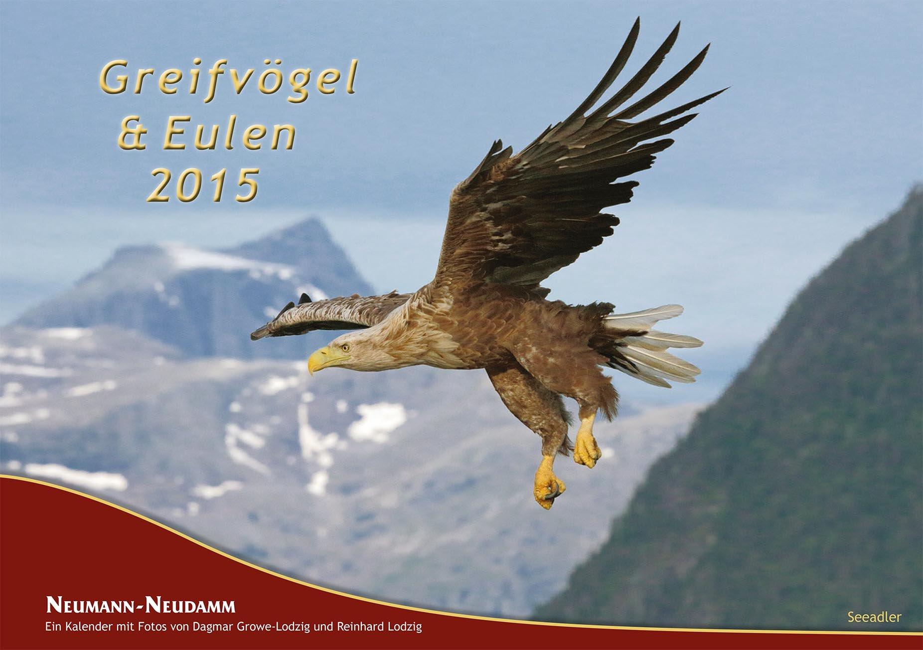 Greifvögel & Eulen 2015