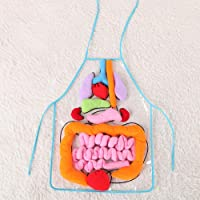 Sanwooden Interesting Toy Organ Apron Toy 3D Human Organ Apron Plush Viscera Kindergarten Teaching Kids Educational Toy Toys for All Ages