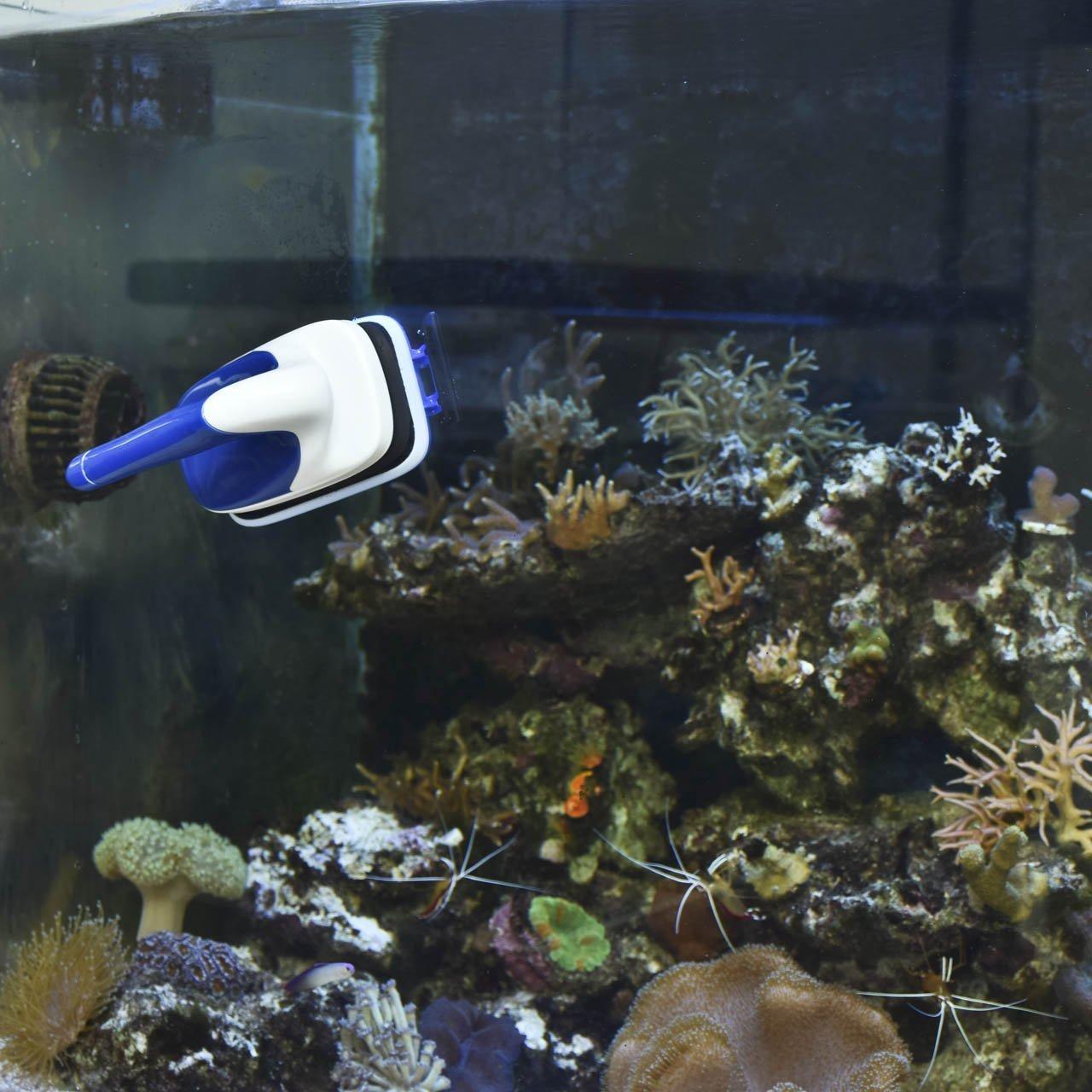 wangxinl Acuario magnética cepillo cristal algas rascador limpiador flotante imán Acuario Limpieza Limpiador de ventanas Acuario Accesorio para Acuario Azul ...