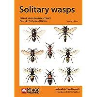 Solitary wasps (Naturalists' Handbooks)