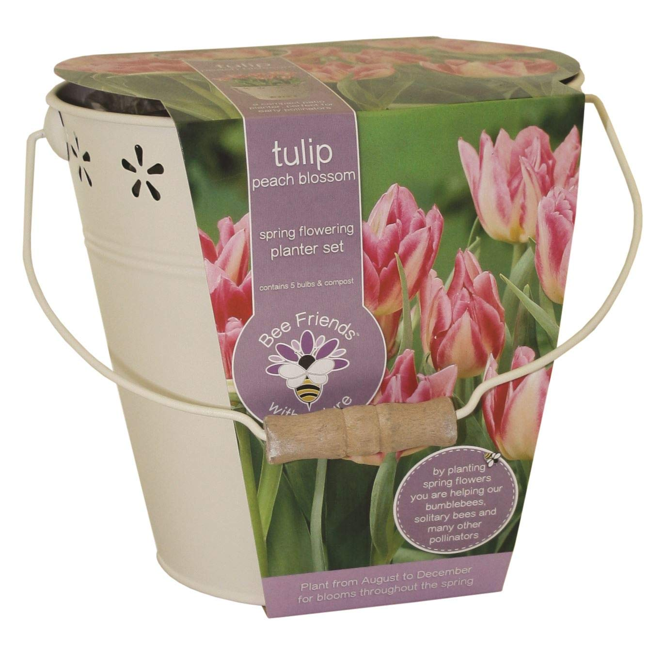 Bees Friends Tulip - Peach Blossom - Bulbs Spring Flower Bucket Growing Kit GPlants
