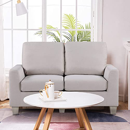 Small Modern Loveseat Couch
