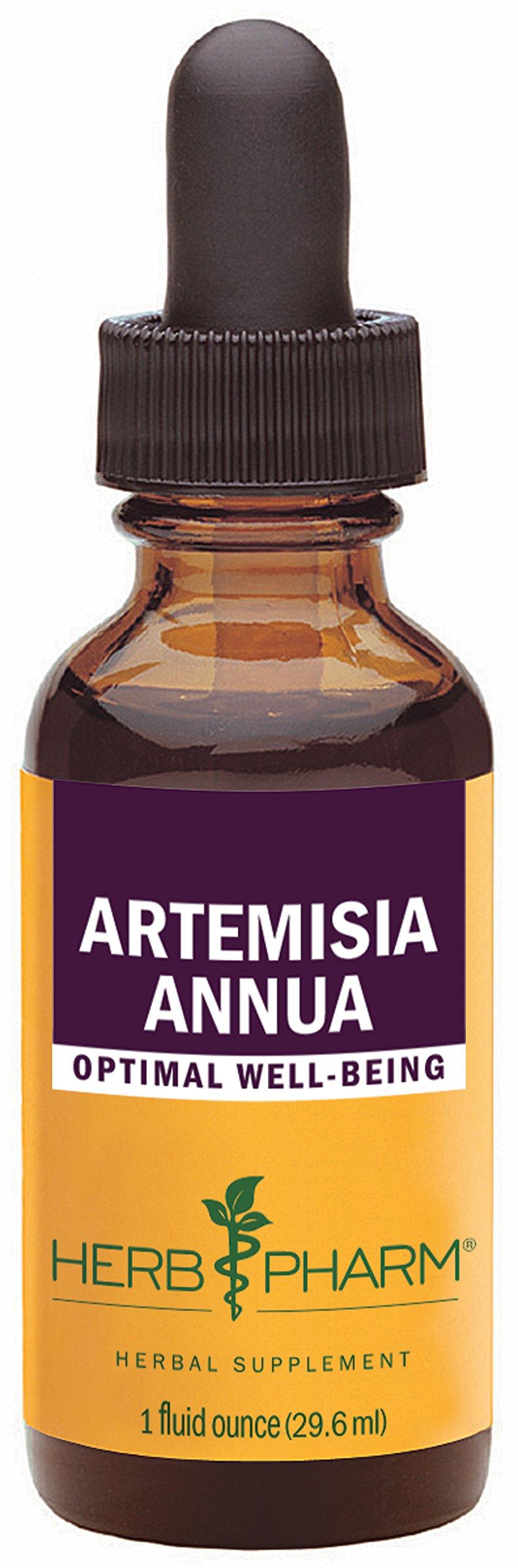 Herb Pharm Certified Organic Artemisia Annua (Sweet Annie) Extract - 1 Ounce
