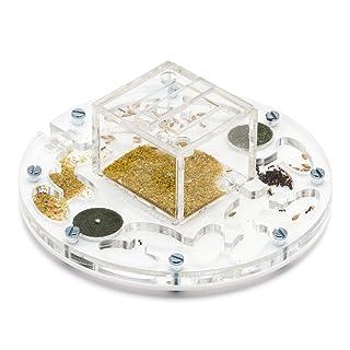 AntHouse Kit educativo formicaio Circolare Medium (Formiche Gratuiti con Regina)