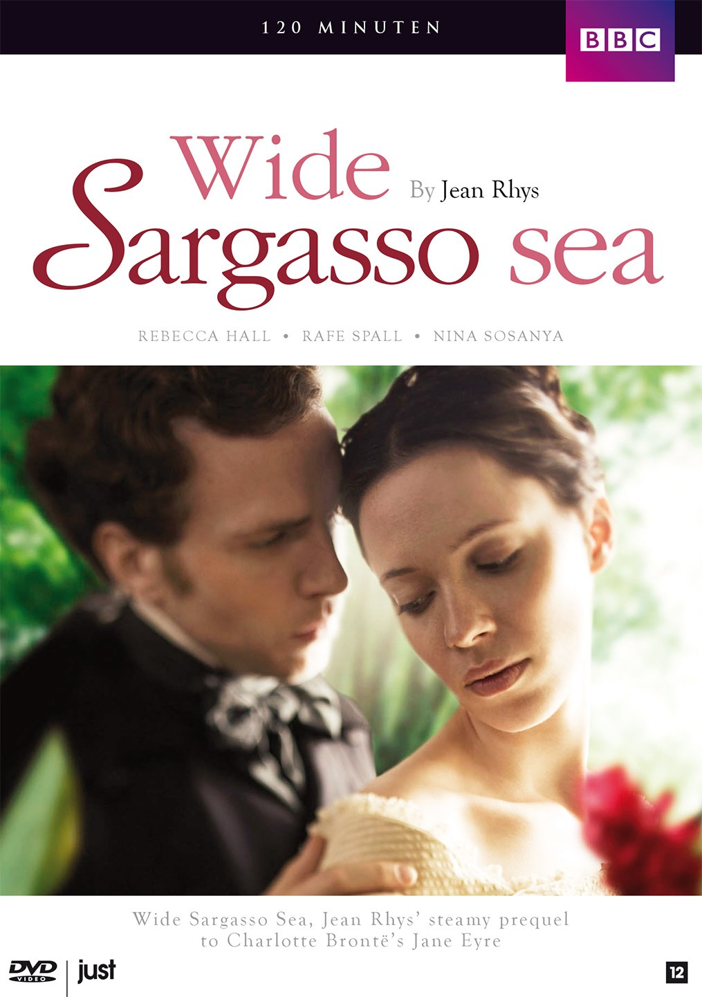 jean rhys wide sargasso sea readers guides to essential dvd wide sargasso sea bbc region 2 english audio