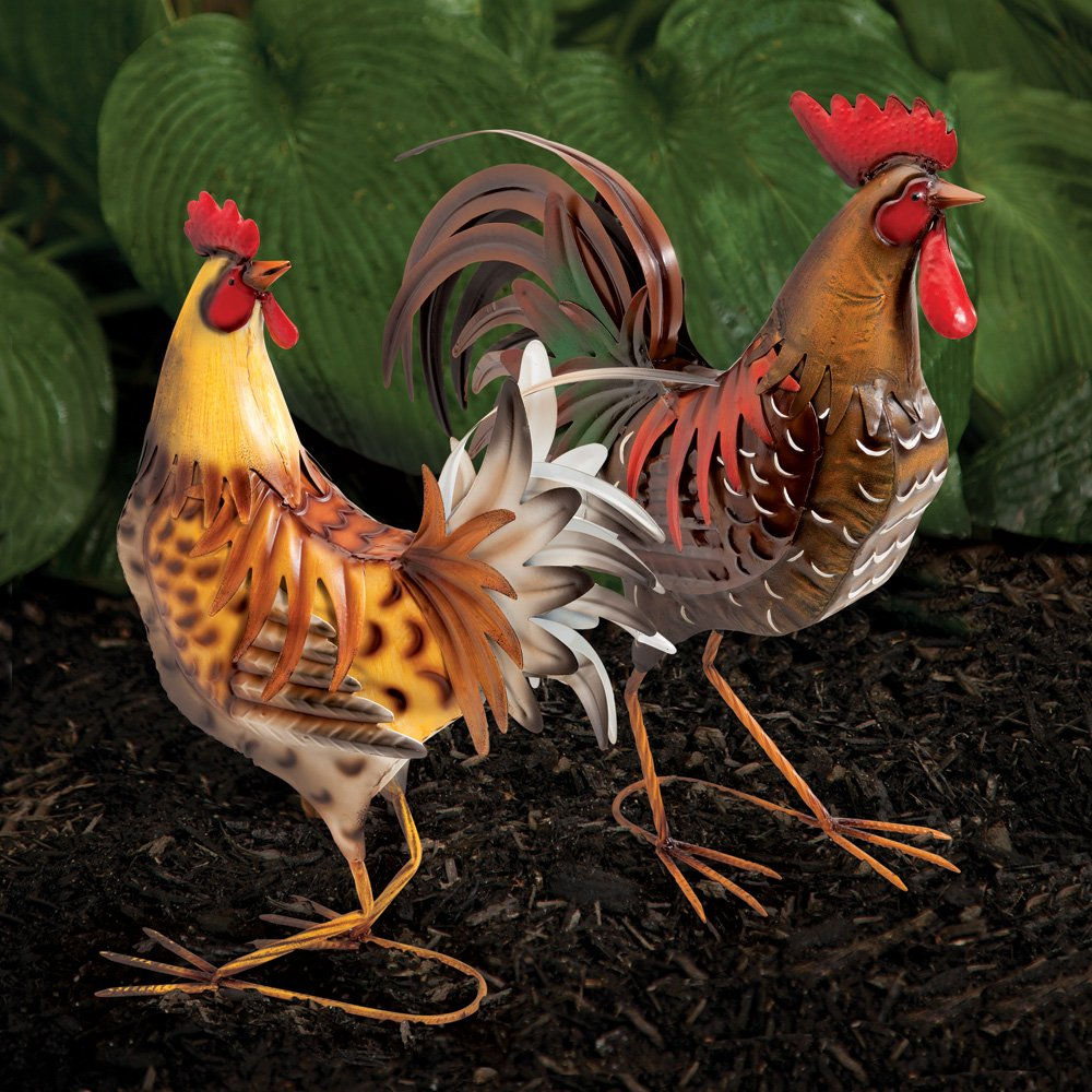 amazon com bits and pieces life sized chicken on the farm