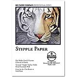 Coquille Paper Fine Stipple 22X30 130Lb