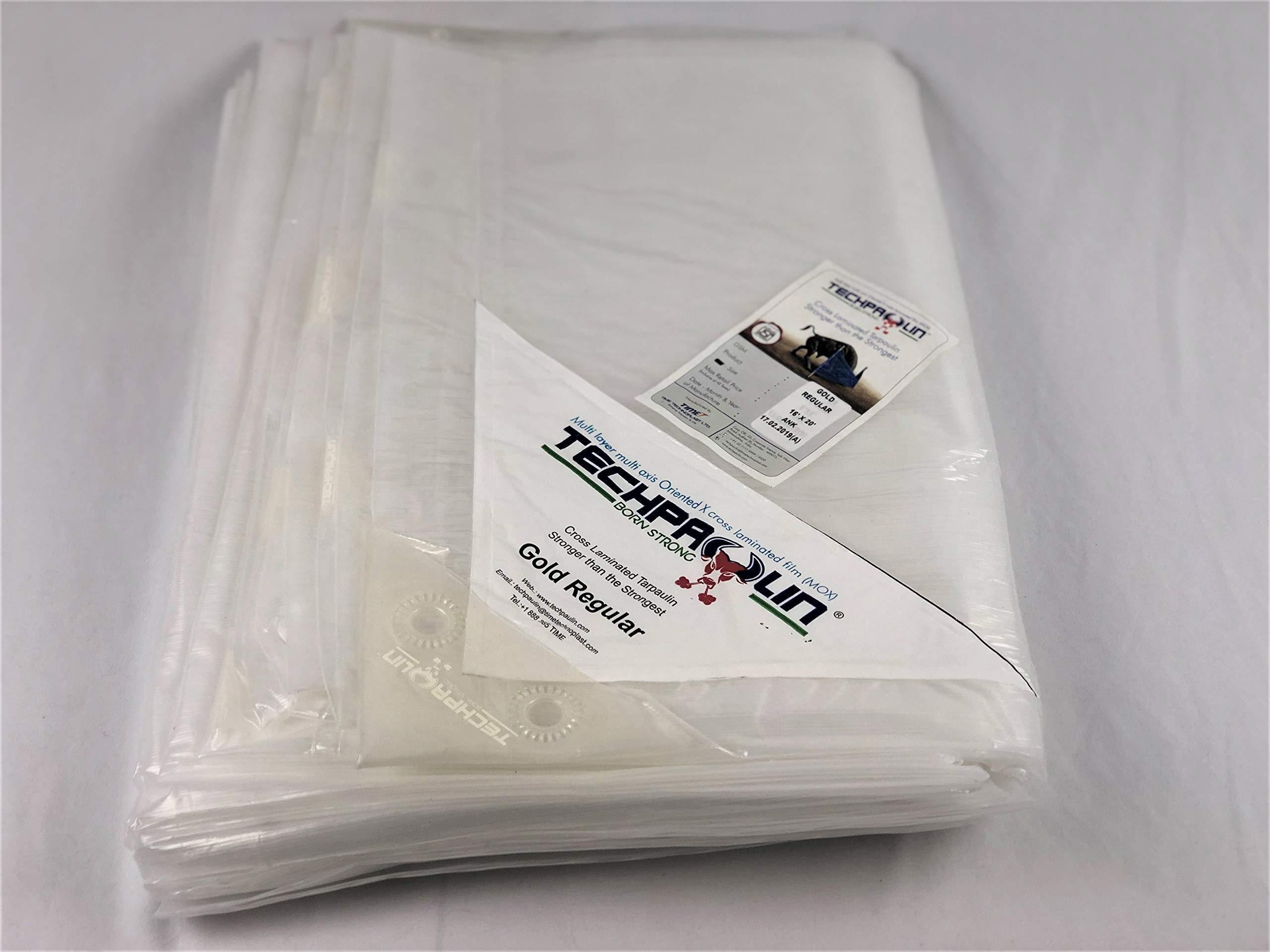 20x25 Heavy Duty Clear Tarp, MOX Film Technology, Premium tarp, Anti-Tear, Waterproof, UV Resistant by Queen of Tarps