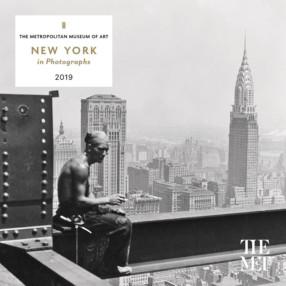 Download New York in Photographs 2019 Mini Wall Calendar PDF