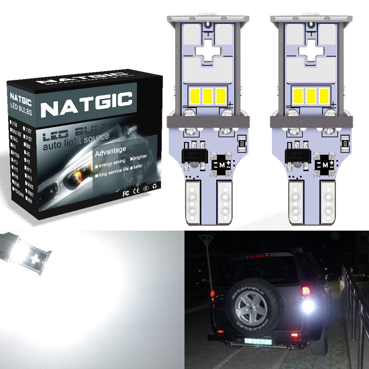NATGIC T10 168 LED Bulb 10pcs 250Lumens 6000K Super Bright 3014 24-EX Chipsets CanBus Erro Free 194 2825 175 921 912 LED Replacement Light for Car Interior Light Turn Signal Bulb Side Marker Lamp Festoon Map Reading Light 2.5W 12V