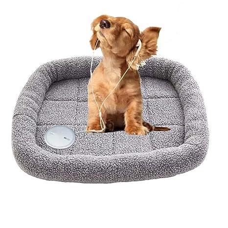 DIY House Cama Grande de Lujo para Perros y Gatos, Suave y cálida, colchón