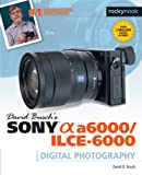 David Busch s Sony Alpha A6000/Ilce-6000 Guide to Digital Photography