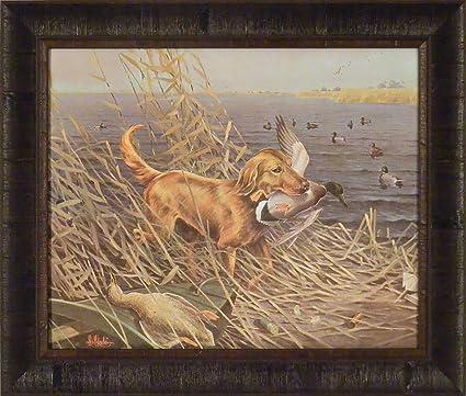 Amazon.com: Golden Retriever by Les Kouba 20x24 Lake Ducks Mallards ...