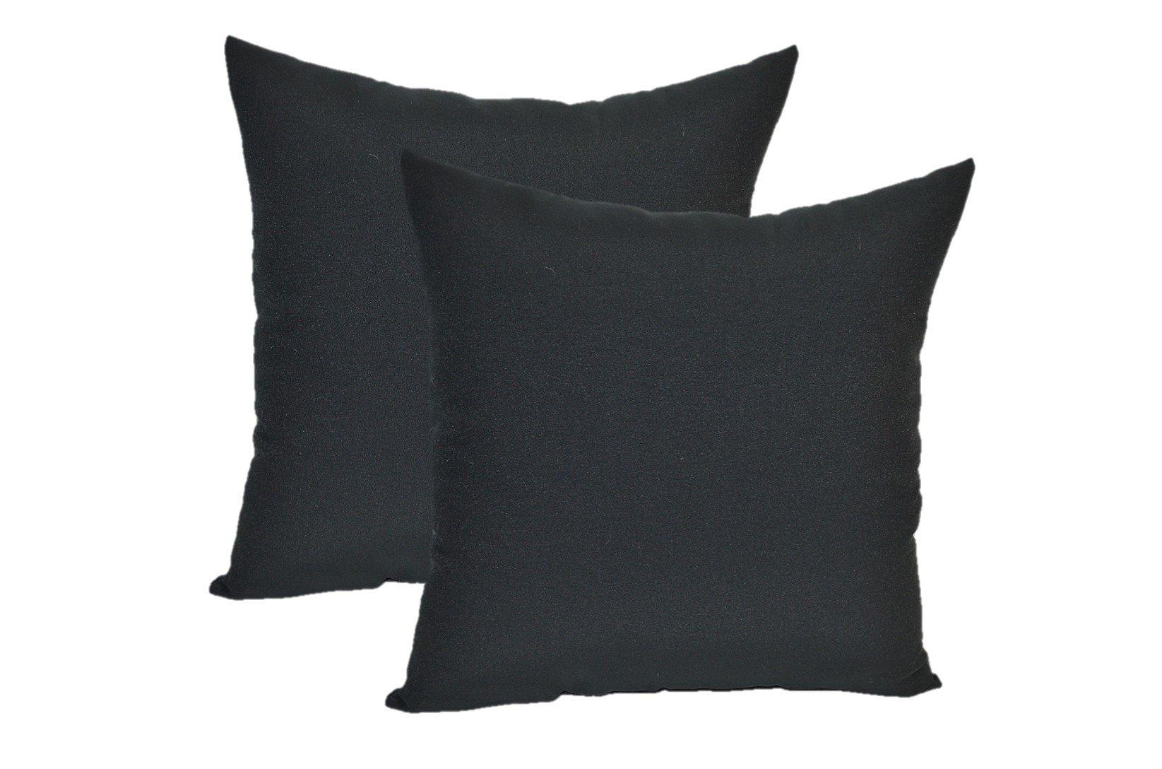 Set of 2 Indoor / Outdoor 20'' Decorative Throw Pillows - Solid Black