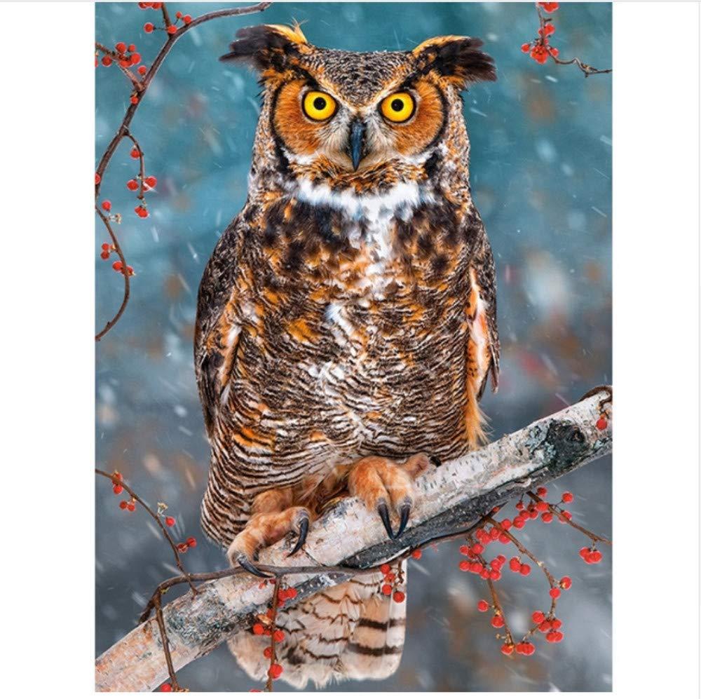 WAZHCY Malen nach Zahlen für für für Kinder Erwachsene Wandkunst Eule Vogel Geschenk DIY 40X50CM Ohne Rahmen B07PKC1LXR | Elegantes und robustes Menü  9d3435