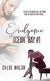 Endgame: A Stepbrother, Bully Romance (Ocean Bay #1) (English Edition)