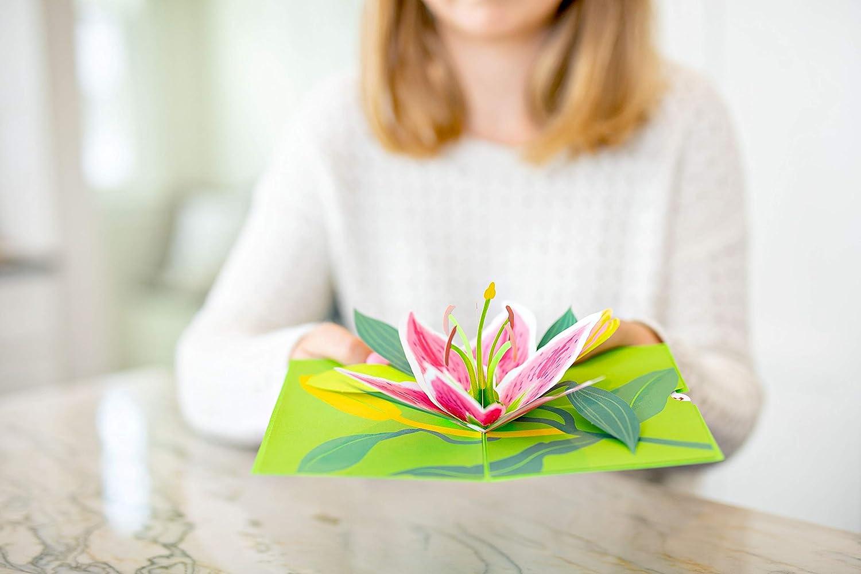 Greeting Card Summer Card Appreciation Card Flower Card Spring Card 2019 Birthday Card Lovepop Daisy Patch Pop Up Card Mothers Day Card 3D Card