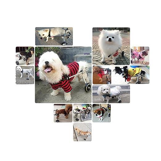 ANMASBOX, tamaño para Perros pequeños, Carrito de Acero Inoxidable, Silla de Ruedas para Mascotas, Gatos, Perros, para rehabilitación de Patas, para Perros ...