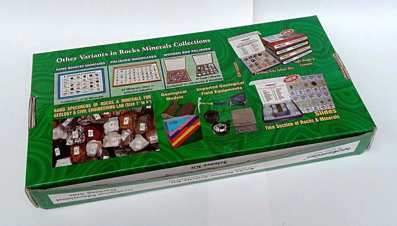 Kit de actividades de Rocks Science con herramientas de ...