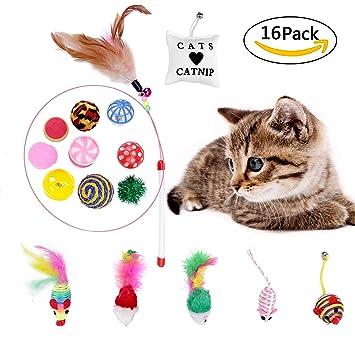 Scoolr Juguetes para gatos, 16 unidades, juguetes para gatitos, gatos, juguetes,